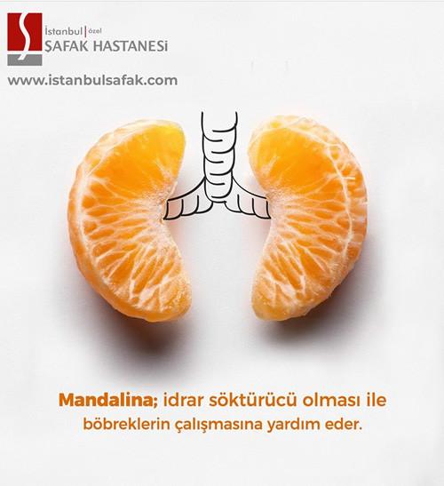 project-istanbulsafak-4