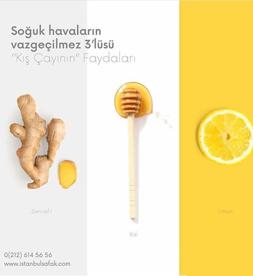 project-istanbulsafak-5