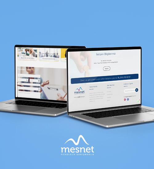 project-mesnet-3
